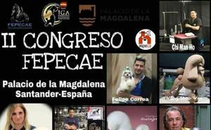 Perros de ensueño en La Magdalena