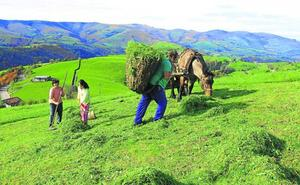 Los valles altos pasiegos pierden un 2% de su población cada año
