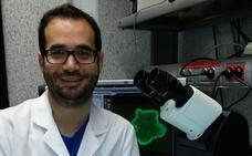 Un cántabro, al frente de un avance sobre células madre para frenar el cáncer