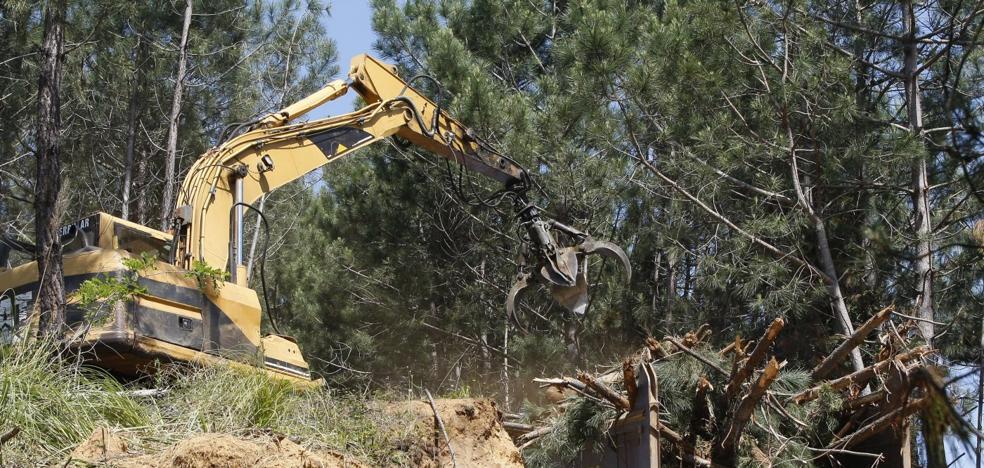 Un estudio dice que la contaminación en el suelo impide construir el campo de golf