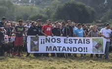 Ganaderos del Alto Asón protestan por los ataques de los lobos a sus rebaños