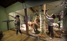 El Museo de la Naturaleza se transforma