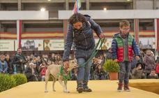 Día de perros en el Ferial