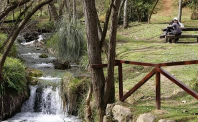 Torrelavega fomentará la reproducción de aves y anfibios en el parque de La Viesca