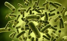 Las bacterias ultrarresistentes matan a miles de españoles