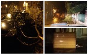 El vendaval nocturno deja ramas desplomadas y desperfectos en mobiliario urbano en distintas zonas de Cantabria