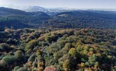 El otoño transforma los paisajes de Cantabria