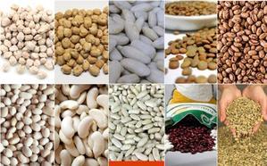 Diez legumbres de calidad diferenciada
