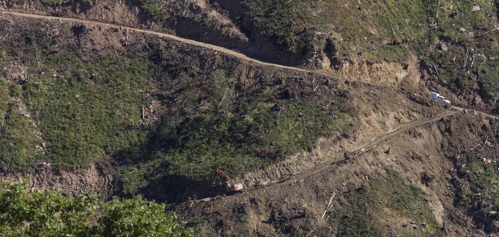 Arca acusa a Montes de «desidia» en la conservación del territorio tras la tala de árboles en Luena