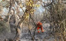 La falta de medios y de peones forestales «pone en riesgo» los montes de Liébana