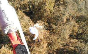 Rescatado un parapentista atrapado en un árbol en Cabezón de Liébana
