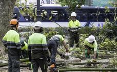 ACS recupera el supercontrato de los parques y jardines de Santander