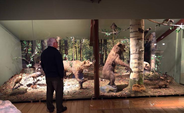 Reabierto el Museo de la Naturaleza tras su reforma