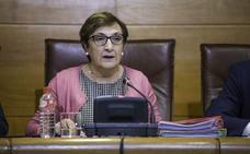 La Fiscalía ve indicios de delito en los contratos del SCS, pero deja fuera a la consejera Luisa Real
