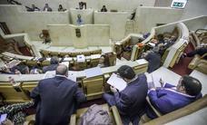 Aprobada por unanimidad la Ley de derechos de personas con discapacidad