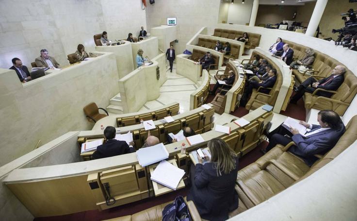 Pleno del Parlamento de Cantabria para debatir el proyecto de Ley de derechos de las personas con discapacidad