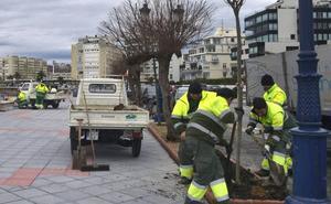 El Ayuntamiento de Santander garantiza los empleos en parques y jardines con la futura adjudicataria