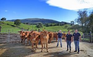 La ganadería que resiste y despunta