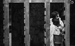 'Los perros', una metáfora de la sociedad del siglo XXI, cierra la Muestra de Teatro