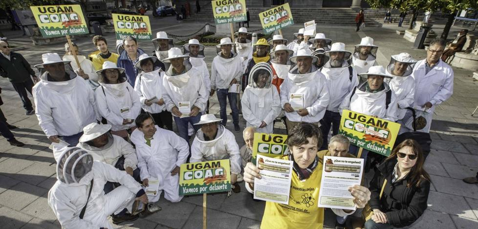 «Pedimos la persecución del fraude y más claridad en el etiquetado de la miel»
