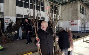Torrelavega inicia la campaña del árbol para repartir 3.400 ejemplares