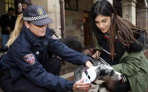 La Policía Local de Torrelavega incorpora lectores de microchips de mascotas