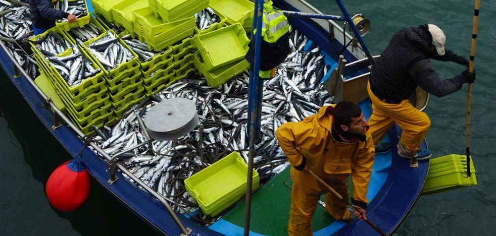 Los pescadores cántabros muestran malestar por la reducción de la cuota de verdel