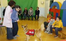 El colegio 'Pintor Martín Sáez' aplica una novedosa intervención educativa con perros