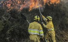 El viento sur y la ausencia de lluvias han desencadenado 74 incendios este mes