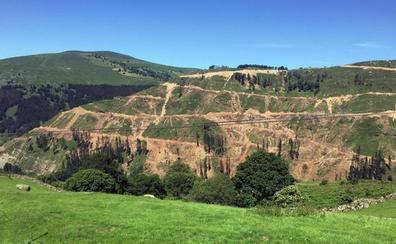 ARCA denuncia el riesgo de tapones en el río Magdalena por el vertido de tocones de las talas