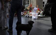 La Guardia Civil apunta a que la célula de Barcelona planeó un atentado con excavadora