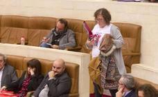 Ordóñez se da de baja como parlamentaria de Podemos y Blanco y Bolado pasan al grupo mixto
