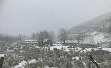 La nieve obliga a cerrar Lunada al tráfico de camiones