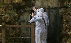 Altamira suspende por segunda semana consecutiva las visitas a la cueva por los niveles de CO2