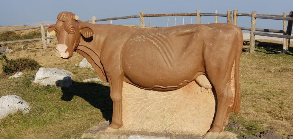 La vaca de Los Machucos no levanta cabeza