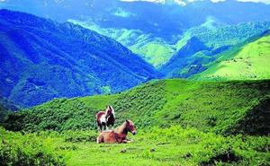 Un ruta por Asturias entre alta montaña, bosques y agua