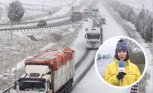 La nieve desencadena 46 incidencias en las carreteras y la lluvia provoca tres argayos