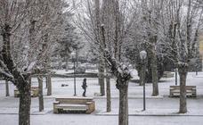 La región comienza a sentir el temporal de nieve
