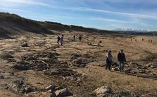 Centinelas Cantabria solicita voluntarios para limpiar los residuos costeros tras las inundaciones