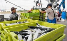 La flota de Santoña cumple el 100% de los parámetros exigidos para proteger el futuro del mar