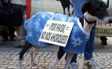 Cerca de 600 personas investigadas o detenidas en un año por maltrato animal