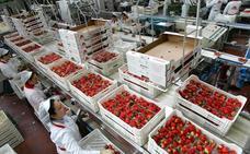 Las cotizaciones suben este año para compensar la ralentización del empleo