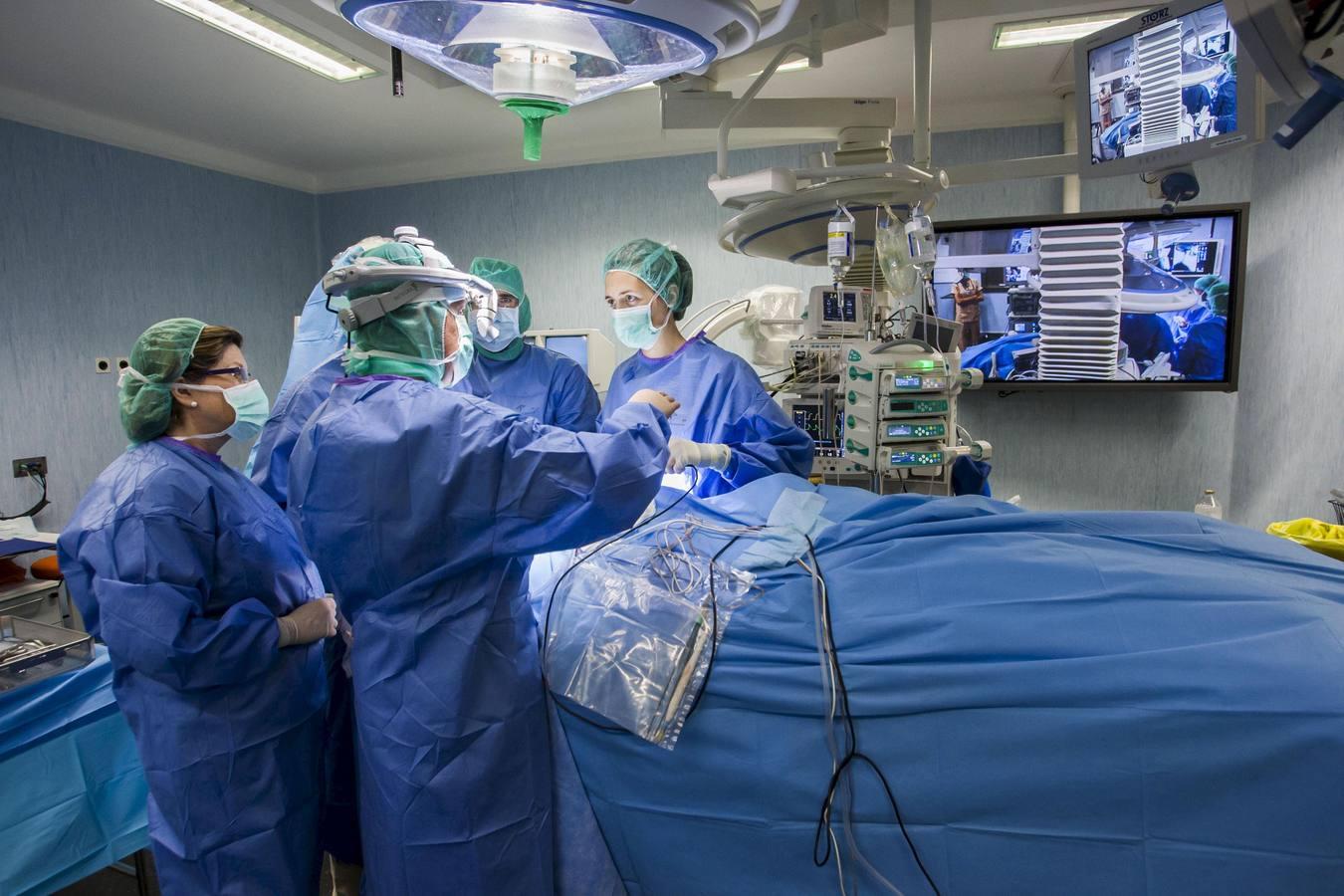 Valdecilla lidera un proyecto para mejorar la supervivencia del paciente trasplantado de pulmón