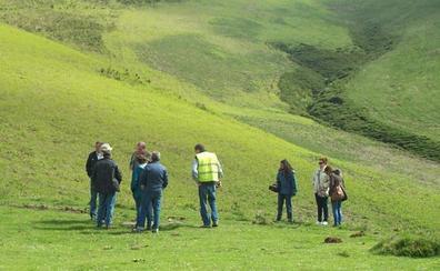 Desaparece el Hito de Escarandi que delimita los municipios de Cillorigo de Liébana y Cabrales