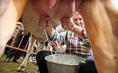 A Ruiloba este domingo a ordeñar, pastorear, hacer quesos...