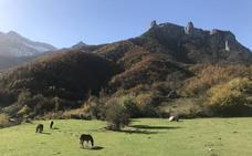Las apps imprescindibles en el móvil para ir a la montaña