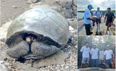 Hallan en Ecuador una tortuga gigante considerada extinta hace un siglo