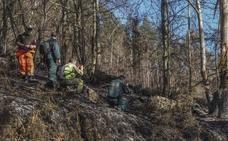 Los investigadores buscan pruebas sobre los autores en una veintena de los 200 incendios
