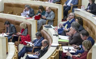 El Parlamento reclama al Estado el Plan Integral de la Bahía