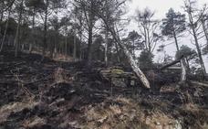 Permanece activo un incendio forestal de los 10 provocados hoy en Cantabria